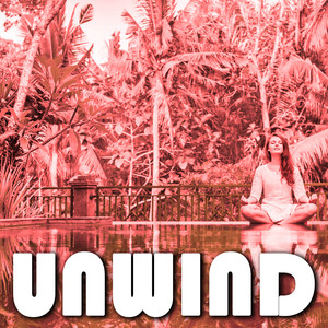 Unwind Albumcover