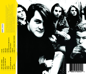 Some Furtive Years A Ned's Anthology album