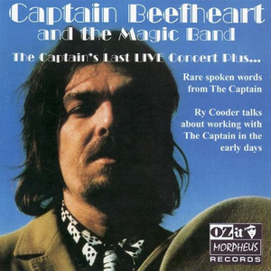 Captain Beefheart The Smithsonian Institute Blues (or The Big Dig) - Live cover
