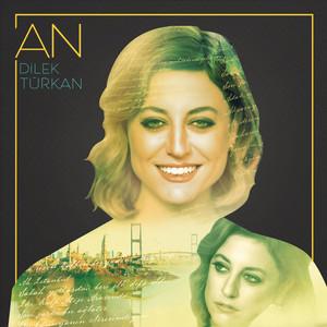 An Albümü