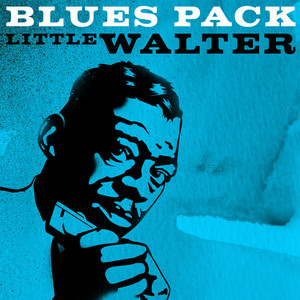 Little Walter Tell Me Mama cover