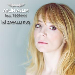 Iki Zavalli Kus feat. Teoman Albümü