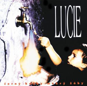 Lucie - Cerny kocky mokry zaby