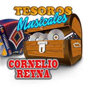 Cornelio Reyna, Kiko Montalvo Mi tesoro cover