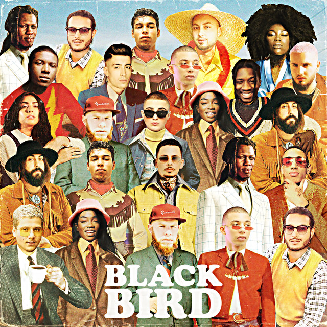 Album cover for Blackbird by DJ Elite