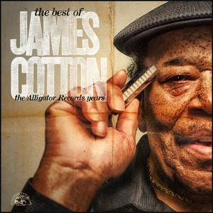 The Best Of James Cotton - The Alligator Records Years album