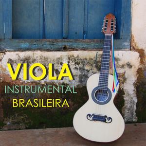 Viola Instrumental Brasileira album