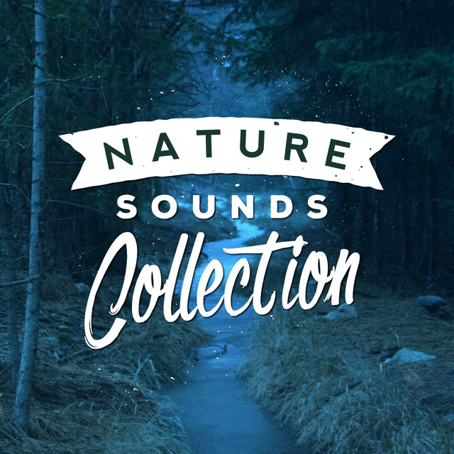 Nature Sounds Collection Albumcover