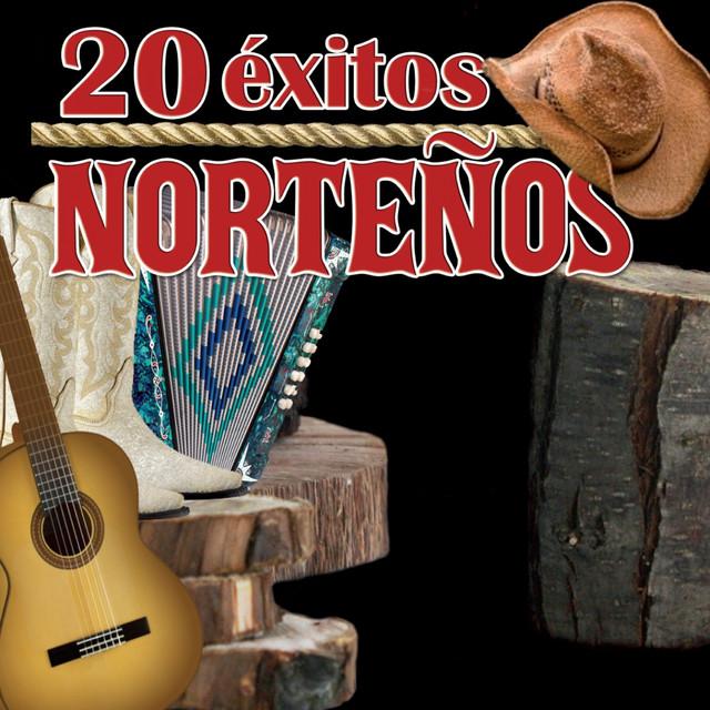 Various Artists 20 Éxitos Norteños album cover