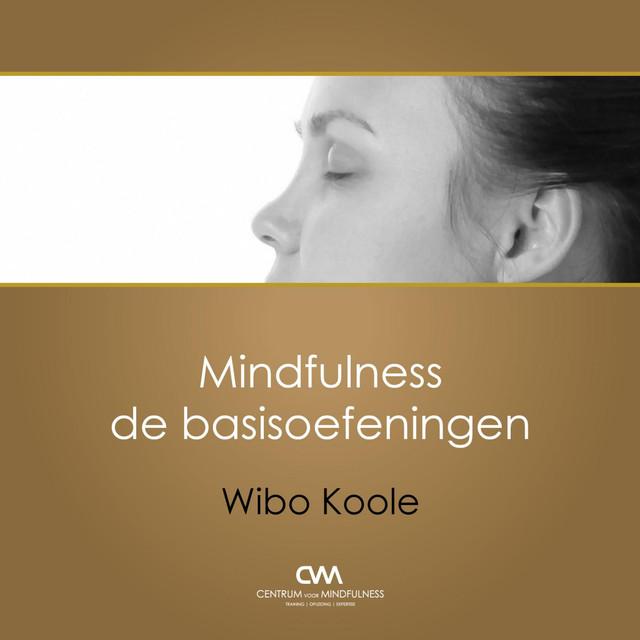 Artwork for Zitmeditatie Met Aandacht Voor De Ademhaling (20') by Wibo Koole