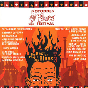 Notodden Blues Festival-The Best Of People And Blues-Nbf Vol. 3 album