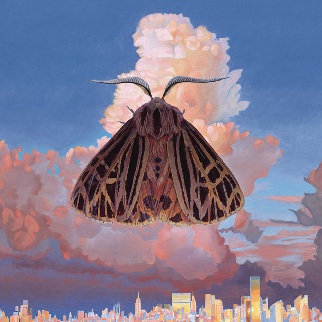 Album cover for Moth by Chairlift
