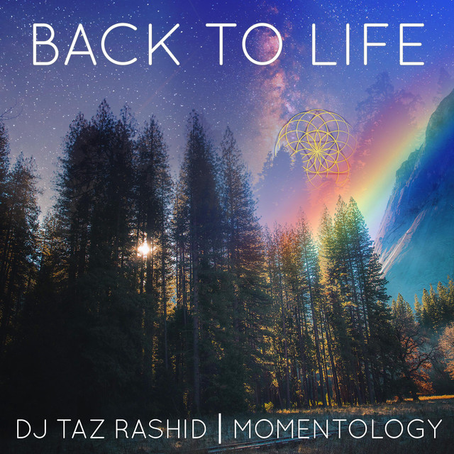 Album cover for Back to Life by DJ Taz Rashid, Momentology
