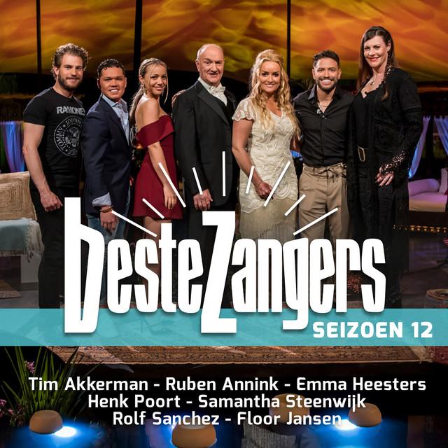 Album cover for Beste Zangers Seizoen 12 by Various Artists