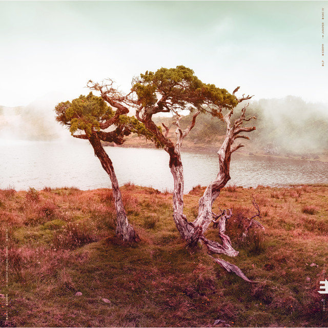 Album cover for Juniper by Slowly Rolling Camera