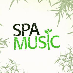Spa Music Albumcover