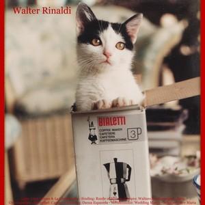 Walter Rinaldi
