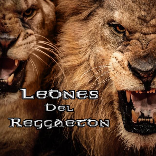 Leones Del Reggeaton