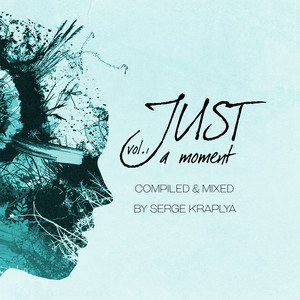 Just a Moment, Vol. 1 (Compiled & Mixed by Serge Kraplya) album