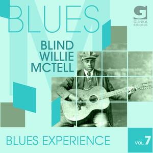 Blues Experience, Vol. 7 album