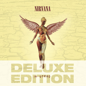 Nirvana Heart‐Shaped Box cover
