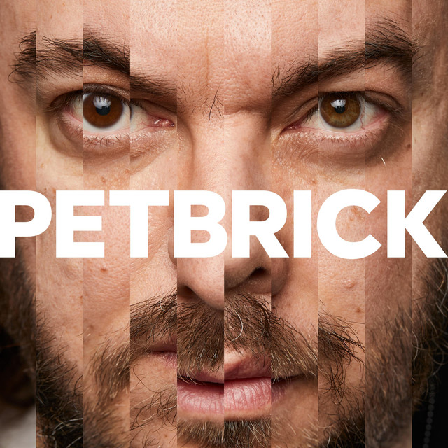 Petbrick