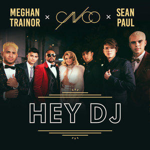 Hey DJ (Remix) Albümü