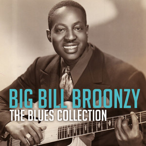 The Blues Collection: Big Bill Broonzy