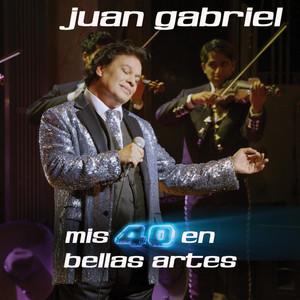 Mis 40 En Bellas Artes Albumcover