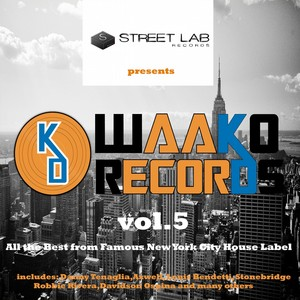 Streetlab presents The Best of Waako Records, Vol. 5 Albumcover