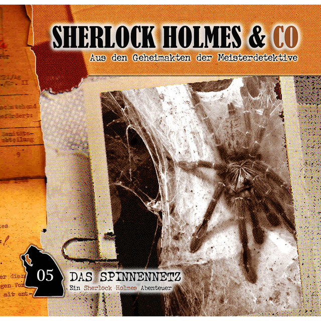 Folge 05: Das Spinnennetz Cover