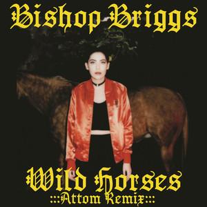 Wild Horses (Attom Remix) Albümü