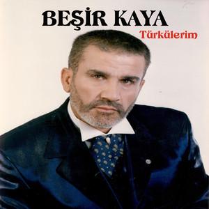 Türkülerim Albümü