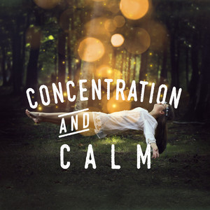Concentration and Calm: White Noise Albumcover