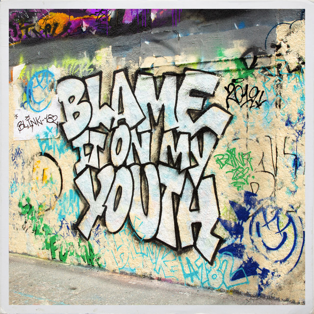 blink-182 - Blame It On My Youth