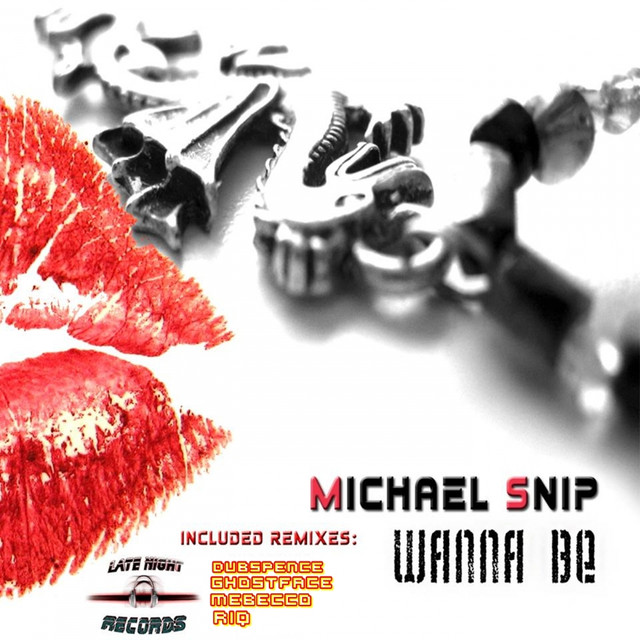 Michael Snip on Spotify
