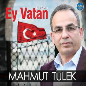 Mahmut Tulek