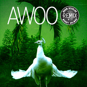 Awoo (feat. Betta Lemme) [Adam Aesalon & Murat Salman Remix]