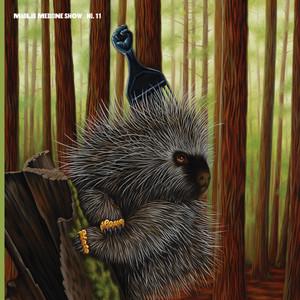 Madlib Medicine Show #11: Low Budget High Fi Music album