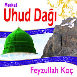 Merkat / Uhud Dağı Albümü