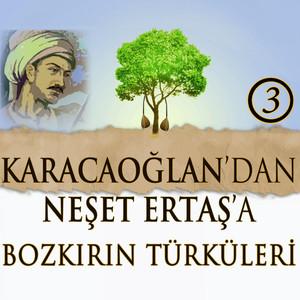 Karacaoğlan'dan Neşet Ertaş'a Bozkırın Türküleri, Vol. 3 (Traditional) Albümü