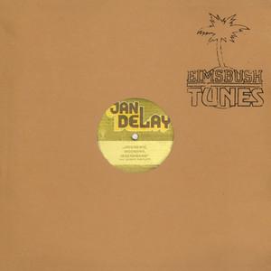 Irgendwie, Irgendwo, Irgendwann - Jan Delay