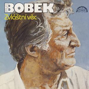 Pavel Bobek - Zvláštní věc