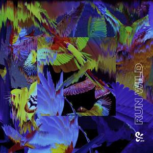 Run Wild album cover