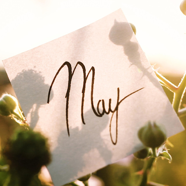 Calendar Project: May