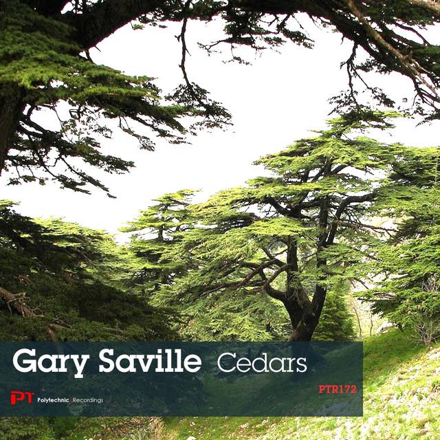 Gary Saville