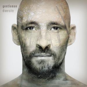 Diversity (Deluxe Version) album