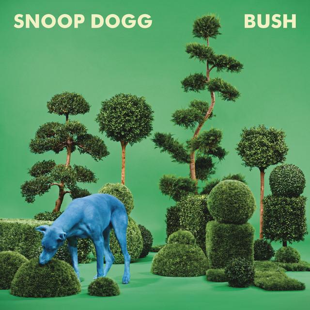 BUSH Albumcover