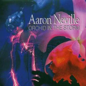 Orchid in the Storm album