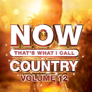 NOW That's What I Call Country, Vol. 12 album